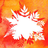 Orange watercolor autumn foliage background Stock Images