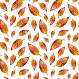 Orange watercolor autumn leaves seamless pattern. Hand paint red watercolour autumn background of falling leaf, design for fabric, textile, wrapping paper Stock Photo