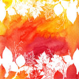 Orange watercolor background with white leaves Royalty Free Stock Image