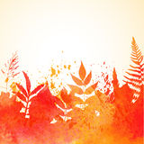 Orange watercolor painted  autumn foliage background Stock Photography