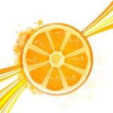 Orange with wave. Illustration of orange with wave on white backgriund Stock Image