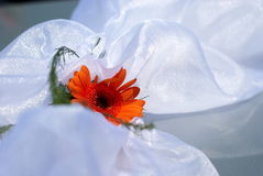 Orange wedding flower on white satin Stock Photo