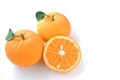 Orange on white background Royalty Free Stock Photo