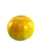 Orange on a white background. Orange  on a white background Royalty Free Stock Image