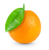 Orange Stock Photos