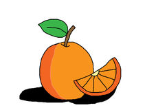 Orange on white background. Drawing and painting orange on white background Royalty Free Stock Photography