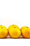 Orange on white background. Orange, fruit, juicy, background, circle, citrus, nature color  cut drop droplet food fresh freshness health isolated many nutrition Royalty Free Stock Images