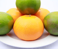 Orange on a white background. Royalty Free Stock Photography