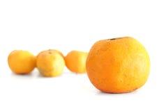 Orange on white Stock Photos