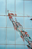 Orange and white crane reflection Stock Photography
