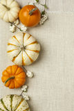 Orange and white decorative pumpkins on white burlap cloth background. Vertical image with copy space.