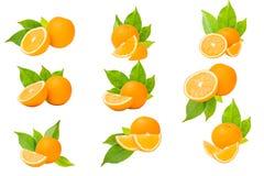 orange white för bakgrundsfrukt arkivfoton