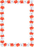 Orange and white floral border with copy space. Orange and white Hibiscus border Royalty Free Stock Image