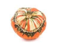 Orange, white and green Turks Turban squash Royalty Free Stock Photo