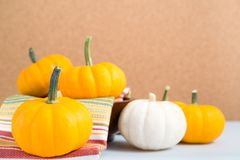 Mini pumpkins on napkin. Orange and white mini pumpkins on a cloth towel with cork background Stock Photos
