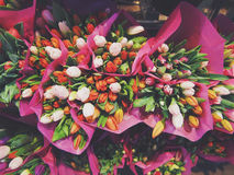 Orange White and Pink Petaled Flowers Bouquet Stock Images