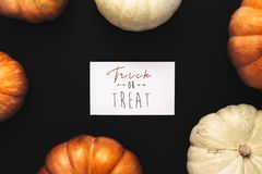 Orange and white pumpkins with trick or treat card royalty free stock photos