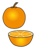 The orange. Orange whole and sliced in half,  on white. Vector illustration Stock Image