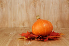Orange whole striped pumpkin Royalty Free Stock Images