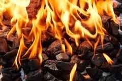 Orange wildes Feuer auf der schwarzen Kohle vorbereitet für Grillgrill stockbild