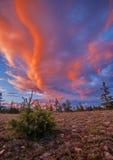 Orange Wolken Lizenzfreie Stockfotografie