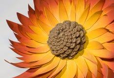 Orange wood flower. On white background Stock Photos