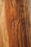 Orange wood texture. Cracked wood texture of warm orange color royalty free stock image