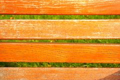 Orange wooden texture and green grass background Royalty Free Stock Photography