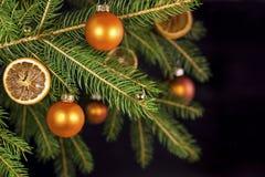 Orange xmas balls on a tree Royalty Free Stock Photography