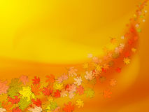 Orange and yellow autumn background with colorful maple leaves Stock Images