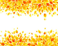 Orange and yellow autumn fall leaves background Stock Photography