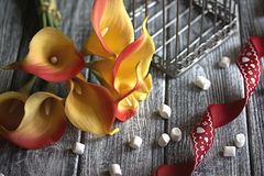 Orange yellow calla lilies with red ribbon and white marshmallows on wooden gray background.  stock photography