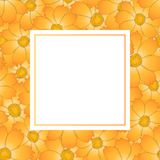 Orange Yellow Cosmos Flower Banner Card. Vector Illustration.  stock illustration