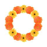 Orange and yellow daisy circle frame Stock Photo