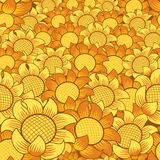 Orange/yellow flower pattern. Orange and yellow flower seamless repeating background Royalty Free Stock Photos
