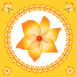 Orange Yellow Flowers. Pretty orange and yellow flowers in a circular shape with a large beautiful flower set in the middle and some smaller flowers around the royalty free illustration