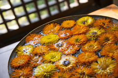 Orange and yellow flowers in water Royalty Free Stock Photos