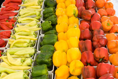 Orange, yellow,green and red peppers at farmers market. Orange, yellow,green and red peppers displayed for sale at farmers market..yellow dominate,orange and red royalty free stock photography