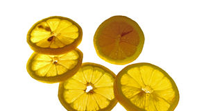 Orange yellow lemon slices. Objects of food, ripe fruit, rounded lemon slices, and full of fruit, green organic food, connect the orange color Royalty Free Stock Images