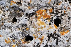 Old stone, rocks covered with orange lichen stock photography