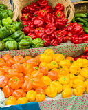 Orange and yellow peppers with baskets Stock Image