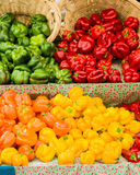 Orange and yellow peppers with baskets Royalty Free Stock Photos