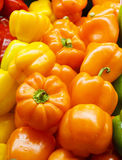 Orange and Yellow Peppers.jpg Stock Images