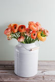 Orange and yellow persian buttercup flowers. ranunculus in gray vintage can, copy space. Stock Photography