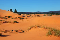 The orange, yellow and pink sand dunes Royalty Free Stock Photography