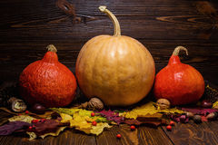 Orange and yellow pumpkins on wooden background, pumpkin on autu Royalty Free Stock Photo