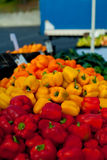 Orange, Yellow and Red Bell Peppers Stock Image