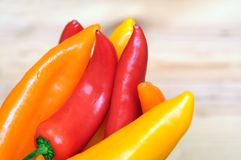 Orange, yellow and red bell peppers Royalty Free Stock Photo