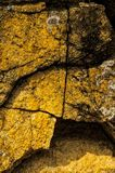 Rock sediment at Hetch Hetchy National Park. Orange yellow Rock sediment at Hetch Hetchy National Park with moss growing Stock Photo
