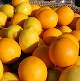 Orange and yellow Sicilian lemons for sale in greengrocers shop Royalty Free Stock Image